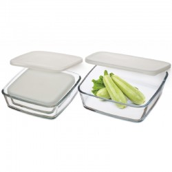 3 PIECE STORAGE DISH SET WITH PLASTIC LID
