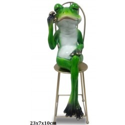 FIGURE OF THE FROG